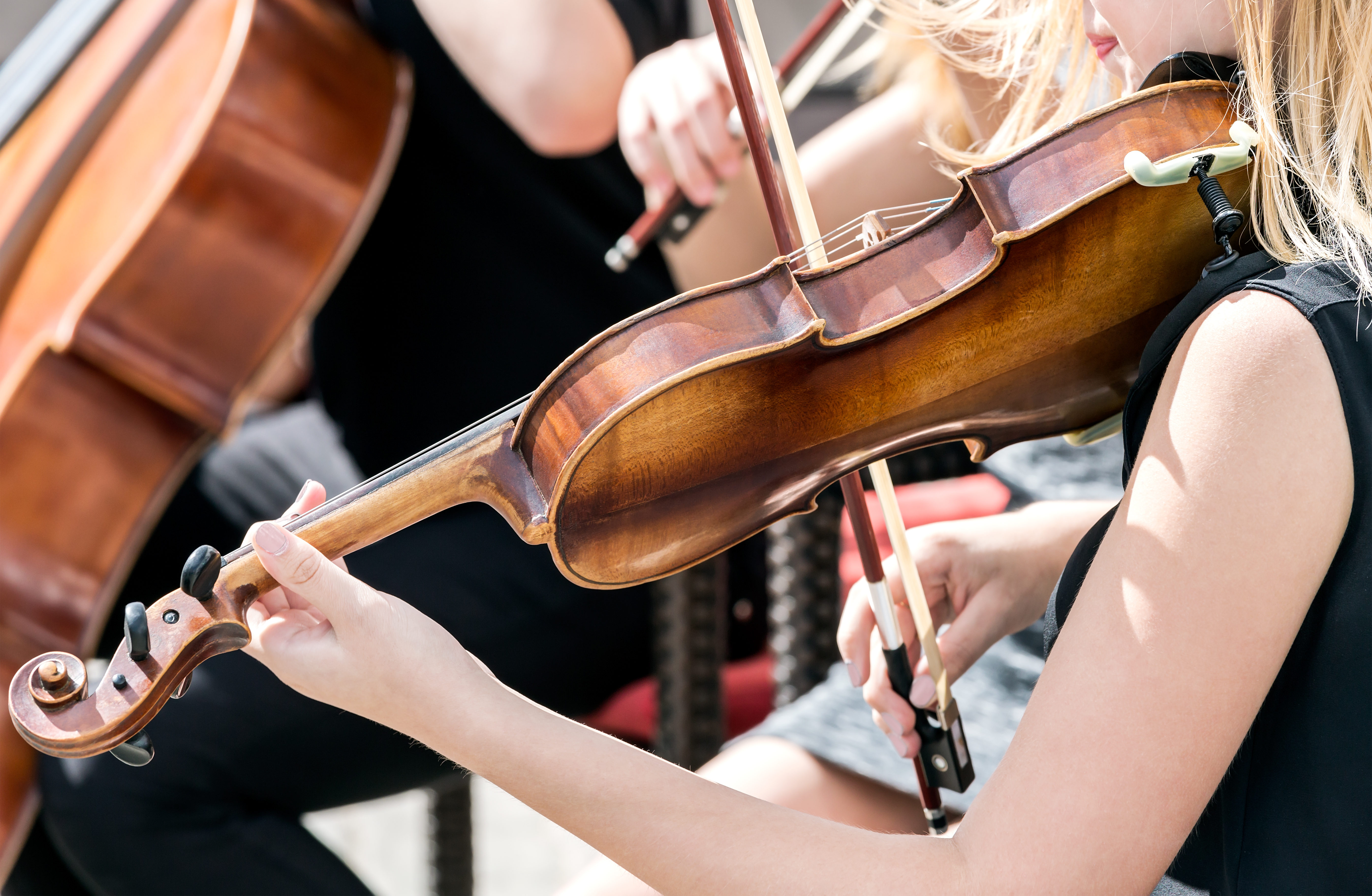 hands of the young woman violinist play music at concert